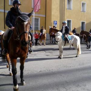 Il 20 gennaio circolazione modificata per la sfilata degli animali