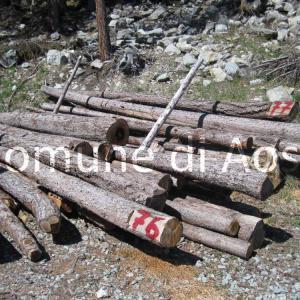 Il Comune mette in vendita alcune cataste di legna da ardere